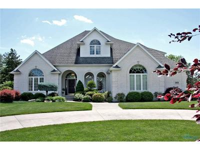 Belmont Farms Single Family Home For Sale: 28954 Belmont Farm Road