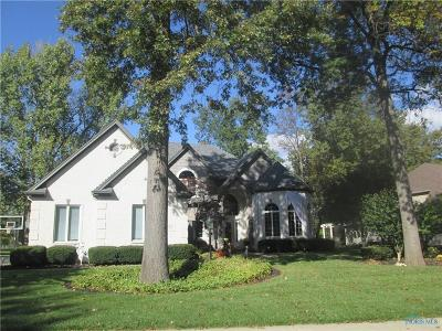 Holland Single Family Home Contingent: 8768 Oak Valley Road