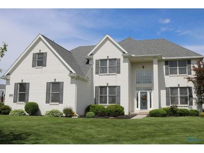 Monclova Single Family Home For Sale: 8450 Snapdragon Lane