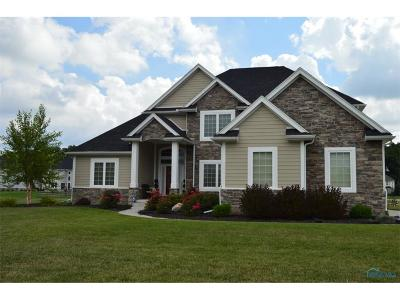 Perrysburg Single Family Home For Sale: 25450 Seminary Road