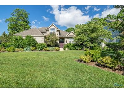 Sylvania Single Family Home For Sale: 2225 Willow Pond Boulevard