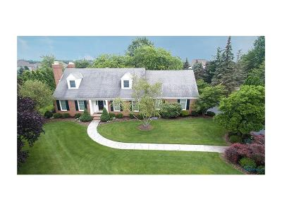 Perrysburg Single Family Home Contingent: 25666 Willowbend Road