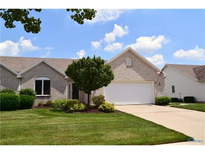 Maumee Condo/Townhouse Contingent: 4447 E Clearwater Drive