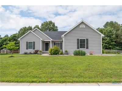 Single Family Home For Sale: 8254 Sycamore Woods Lane