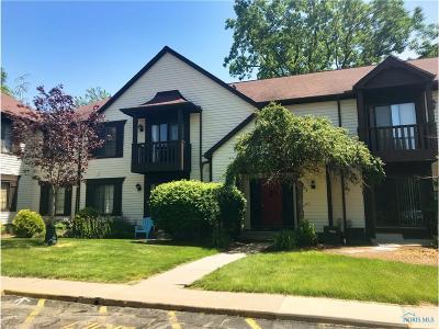 Toledo Condo/Townhouse For Sale: 4521 W Bancroft Street #5
