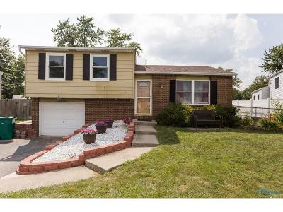 Perrysburg Single Family Home For Sale: 28797 Stargate Road