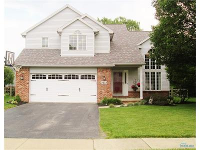Perrysburg Single Family Home For Sale: 7272 Twin Lakes Road