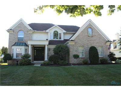 Perrysburg Single Family Home For Sale: 26709 Green Ville Drive
