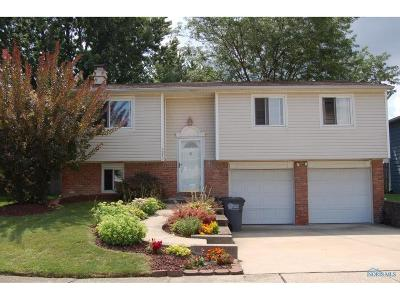 Toledo Single Family Home For Sale: 1970 Northtowne Drive