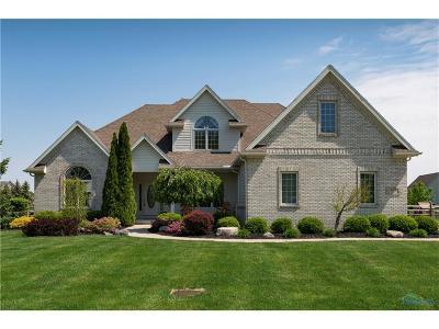 Monclova Single Family Home For Sale: 8432 Kacie Lane