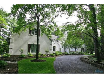 Toledo Single Family Home For Sale: 6048 Shadow Lake Court