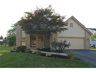 Perrysburg Single Family Home For Sale: 1976 Lexington Drive