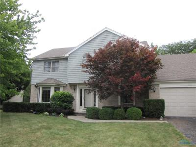 Perrysburg Single Family Home For Sale: 13716 Otusso Drive