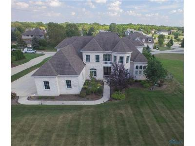 Perrysburg Single Family Home For Sale: 26322 W River Rd