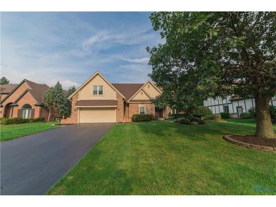 Sylvania Single Family Home For Sale: 5256 Spring Meadow Lane