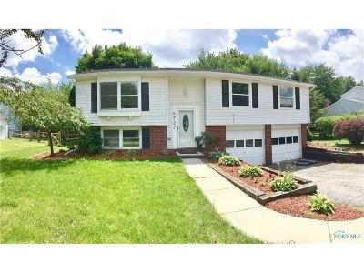 Sylvania Single Family Home For Sale: 6727 Brint Road
