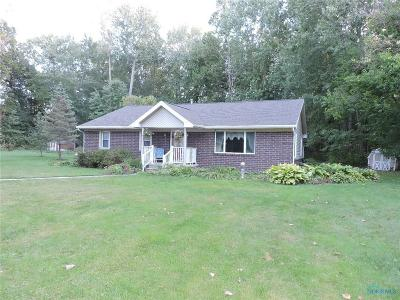 Holland Single Family Home For Sale: 10861 Frankfort Road