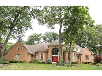 Holland Single Family Home For Sale: 9126 Oak Valley