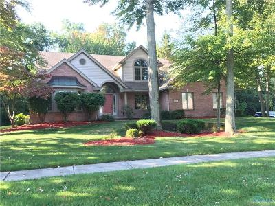 Holland Single Family Home For Sale: 7439 Country Trail