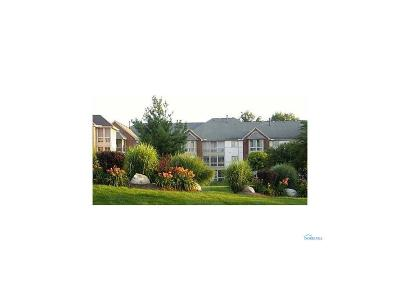 Toledo OH Condo/Townhouse For Sale: $88,000