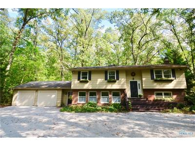 Whitehouse Single Family Home For Sale: 7025 Berridge Road