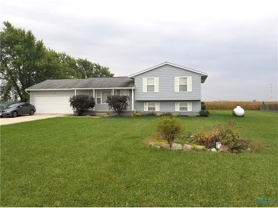 Perrysburg Single Family Home For Sale: 4151 Libbey Road