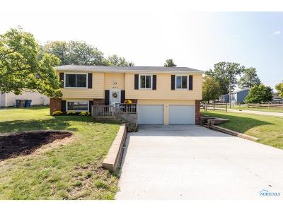 Perrysburg Single Family Home For Sale: 295 Southwood Drive