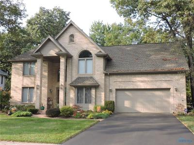 Holland Single Family Home For Sale: 8308 Country Brook Drive
