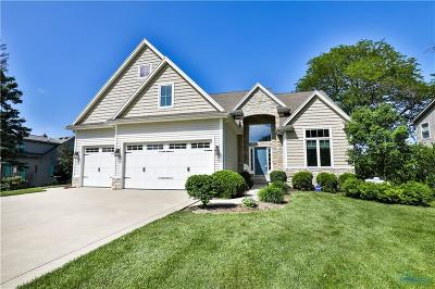 Curtice Single Family Home Contingent: 12451 Lagoon Drive
