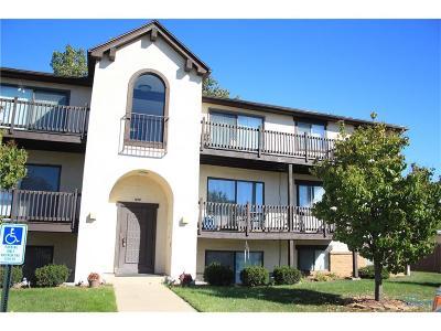 Toledo Condo/Townhouse For Sale: 1658 Brownstone Boulevard #113