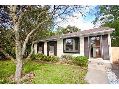Holland Single Family Home For Sale: 301 S McCord Road