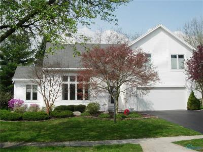 Sylvania Single Family Home Contingent: 3649 Swallow Tail Lane
