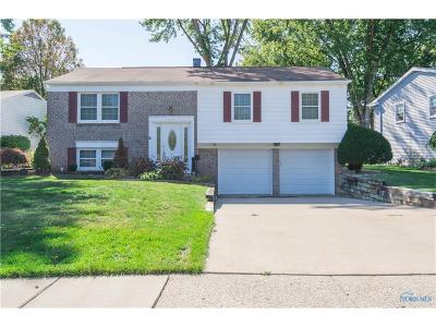 Sylvania Single Family Home For Sale: 6427 Longfellow Road