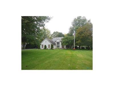 Holland Single Family Home For Sale: 9150 Dorr Street