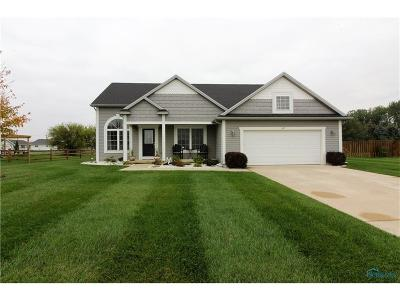 Lucas County Single Family Home For Sale: 601 Sky Way Drive
