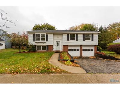 Sylvania Single Family Home For Sale: 6727 Brint Road
