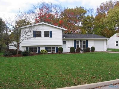 Sylvania Single Family Home For Sale: 6011 Graystone Drive