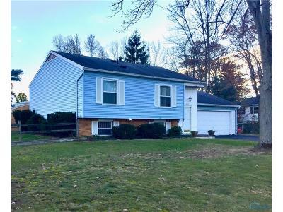 Sylvania Single Family Home For Sale: 6541 Charlesgate