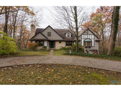 Perrysburg Single Family Home For Sale: 26065 W River Road