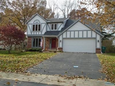 Sylvania Single Family Home For Sale: 3707 Rye Hill Lane