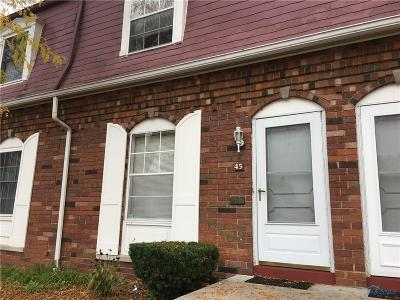 Toledo Condo/Townhouse For Sale: 3217 Glanzman Road #45