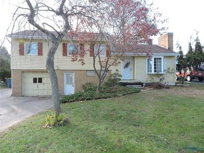 Single Family Home For Sale: 7043 Brint Road