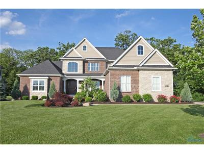 Perrysburg Single Family Home For Sale: 3723 Turtle Creek Drive