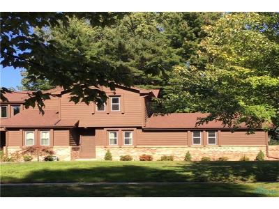 Sylvania Condo/Townhouse For Sale: 4240 Vicksburg Drive