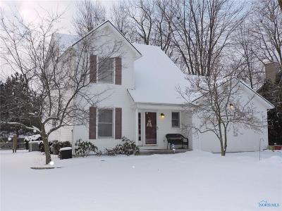 Holland Single Family Home Contingent: 7117 Springfield Hills Drive