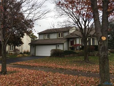 Sylvania Single Family Home For Sale: 3924 Wheatlands Road