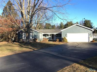 Holland Single Family Home For Sale: 8340 Angola Road