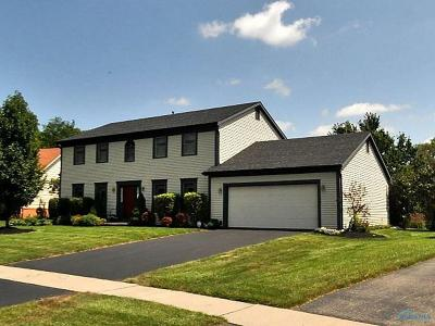 Holland Single Family Home For Sale: 7279 Saw Mill Run