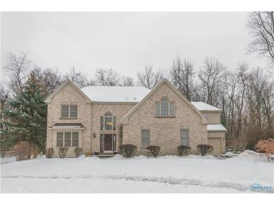 Sylvania Single Family Home For Sale: 7323 Country Meadow Court