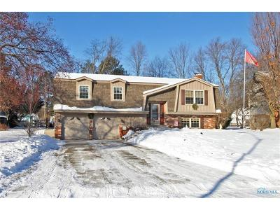 Toledo Single Family Home For Sale: 2138 Blackthorn Drive
